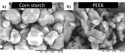 Pore Former Addition in the Preparation of Highly Porous Anode Using Phase-inversion Technique for Solid Oxide Fuel Cell