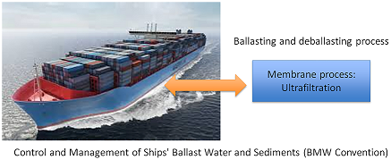 Comparison of Seawater and Freshwater Ultrafltration on Semi-Industrial Scale: Ballast Water Treatment Application
