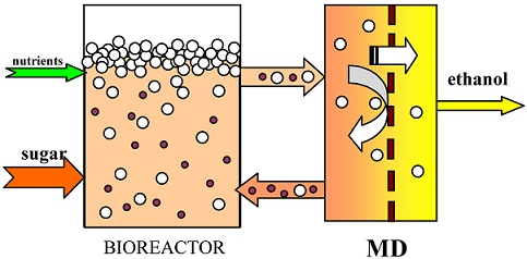 The Application of Membrane Distillation for Broth Separation in Membrane Bioreactors