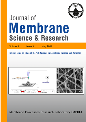 Special Issue: State of the Art Reviews in Membrane Science and Research