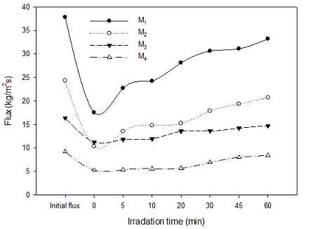 Effect of Ultrasonication on Membrane Structure and Flux Recovery for Whey Ultrafiltration