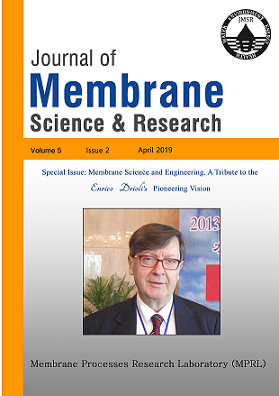 Membrane Science and Engineering. A Tribute to the Prof. Drioli's Pioneering Vision