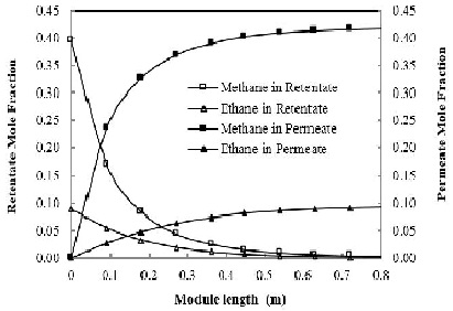 Mathematical Modeling of Gas Separation Process with Flat Carbon Membrane