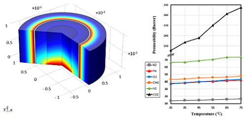 Gas Permeation Modeling through a Multilayer Hollow Fiber Composite Membrane