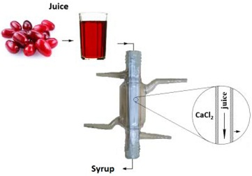 Concentration of Colourful Wild Berry Fruit Juices by Membrane Osmotic Distillation via Cascade Model Systems