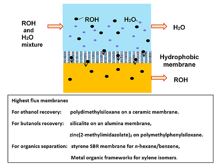The Isolation of Organic Compounds using Organophilic Pervaporation Membranes