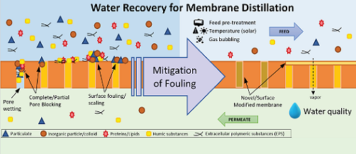 Membrane Distillation for Water Recovery and Its Fouling Phenomena