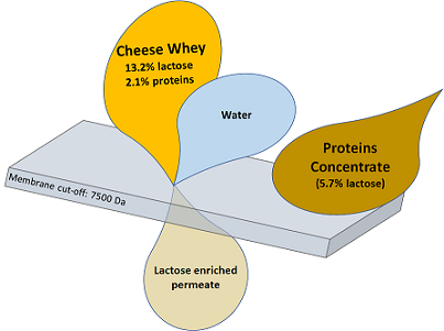 Optimization of Cheese Whey Ultrafltration/Diafltration for the Production of Beverage Liquid Protein Concentrates with Lactose Partially Removed