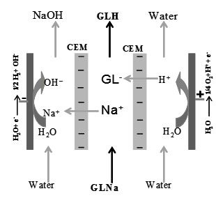 In situ ion substitution of sodium gluconate: Comparison of bipolar membrane electrodialysis and electro-membrane reactor for producing gluconic acid