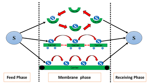 Review on Mechanism of Facilitated Transport on Liquid Membranes